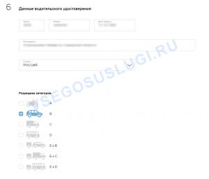 Ввод данных заменяемого водительского удостоверения